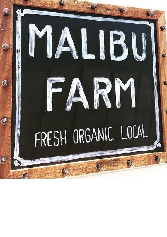 5-1Alexander-design-interiors-Malibu-farm